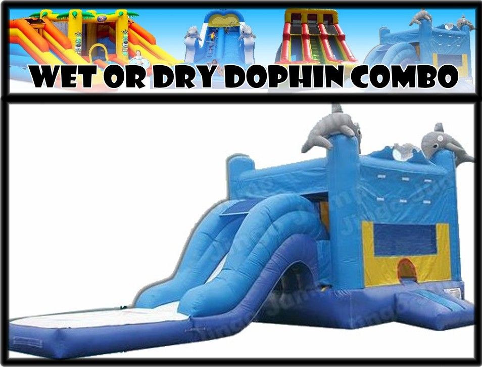 Wet or Dry Dolphin Combo